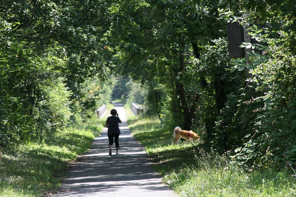 Voie_verte_promeneuse_et_chien