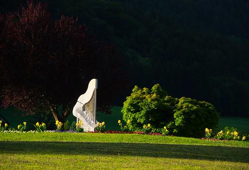 Morning light illuminates the harp