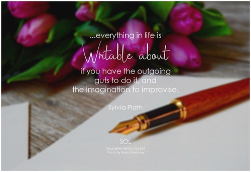 Sylvia Plath ...everything in life is writable about if you have the outgoing guts to do it, and the imagination to improvise