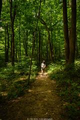 Great Parks photo walk, Tall Grass prairie trail