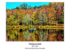 """Fishing on Gold • <a style=""""font-size:0.8em;"""" href=""""http://www.flickr.com/photos/124378531@N04/51336688398/"""" target=""""_blank"""">View on Flickr</a>"""