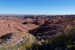 Welcome Views First Seen in Petrified Forest National Park!