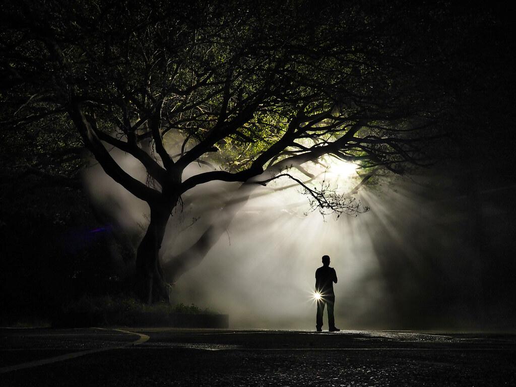 03_2020 OLYMPUS全國攝影大賽「人文風情組」金獎作品〈找尋〉鄭原泓