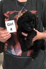 Ella Girl 4 7-30