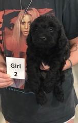 Ella Girl 2 pic 4 7-30