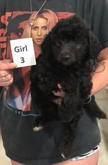 Ella Girl 3 pic 4 7-30
