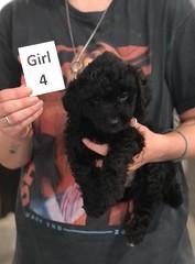 Ella Girl 4 pic 2 7-30