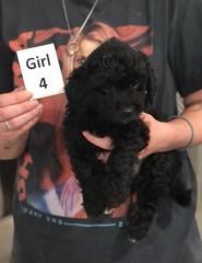 Ella Girl 4 pic 4 7-30