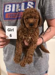 Carly Girl 6 7-30