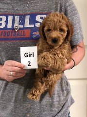 Carly Girl 2 7-30