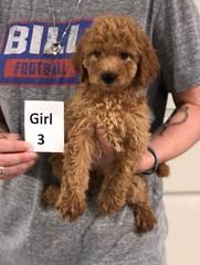 Carly Girl 3 7-30