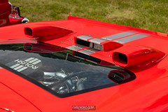20210725 Crouse Ford Car Show 0034 0592