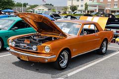 20210725 Crouse Ford Car Show 0068 0494