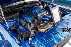20210725 Crouse Ford Car Show 0063 0488