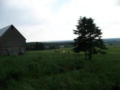 murray-corner-sackville-nb-030