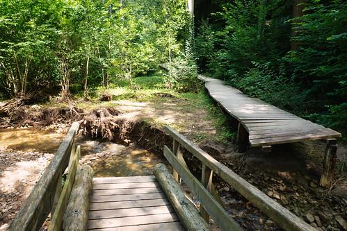 Damaged bridge on Mullerthal Trail Route 3