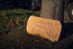 """Demoschild mit dem Text """"Johanna Dohnal Boulevard"""""""