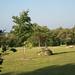 Parc Fontgombault 3