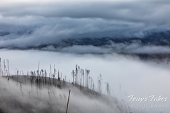 August 4, 2021 - Fog settles in over the East Troublesome Fire burn area. (Tony's Takes)