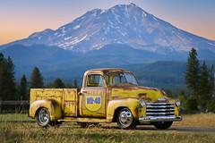 1951 Chevrolet 3100 - Sema 2021-3