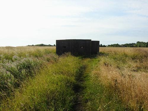 Pill Box near Holmpton
