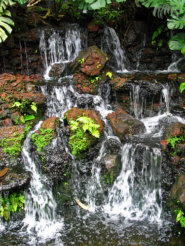 Waterfall in Singapore Botanic Gardens