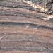 Cow Branch Formation (Upper Triassic; Pit B of Solite Quarry, near Eden, North Carolina, USA) 40