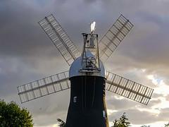 Holgate Windmill, August 2021 - 1