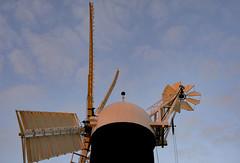 Holgate Windmill, July 2021 - 1