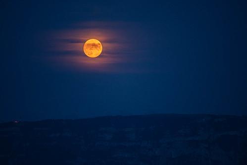 Last Moon In Paradise