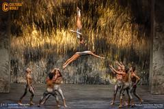 Recirquel Cirque Danse - Bence Vági