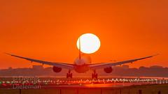 "Dreamliner arriving at sunrise • <a style=""font-size:0.8em;"" href=""http://www.flickr.com/photos/125767964@N08/51412666502/"" target=""_blank"">View on Flickr</a>"