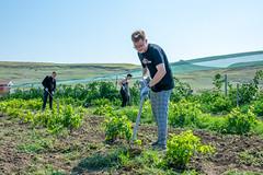 30 августа 2021, На фермерском хозяйстве епархии собрали урожай