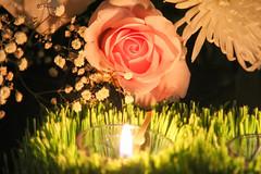 (32) 2021_08_29 Погребение Пресвятой Богородицы. Богородичное