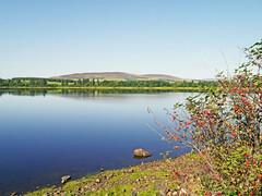 Photo of Lintrathen Loch
