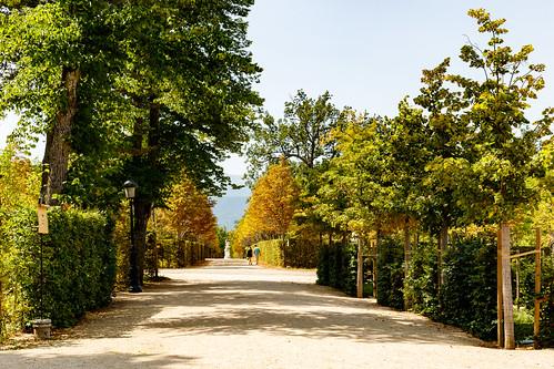 Parc du Palais