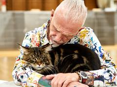 Hug Guzman, Sasquash, Katte udstilling, Søften, Hinnerup - 2021-09-05 09.40.48_9056200 - ©Anders Gisle Larsson