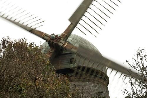 Golden Gate Park - 090721 - 03 - Dutch Windmill at Queen Wilhelmina Garden