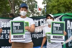 Honduras (3)