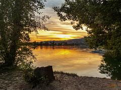 Sonnenuntergang am Rhein bei Waldshut