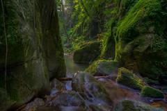 Haselbach-Wasserfall: Blick in den zweiten Kessel