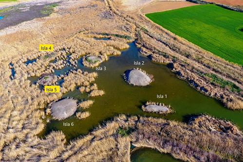 99 - Foto aérea de las islas de la tercera laguna justo después de la actuación 10-3-2020. Foto Marta Guzmán