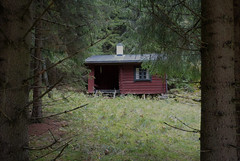 a cabin in the woods .......