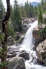 Alberta Falls waterfall in Rocky Mountain National Park in Colorado