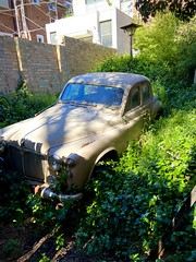 256/365. The last of 3 abandoned Rover cars I found at a house in Parkville Melbourne. This one is a different model of the Rover P4 105R variant. I don't know why these dear old girls have been left out and neglected like this but it is quite sad.
