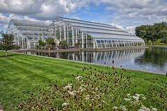 Photo of Glasshouse