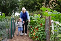 229/365 the garden & grandma
