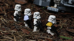Training Camp - Group Shot