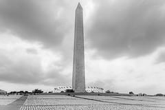 2021.09.16 In America - Remember, Washington, DC USA 259 57214