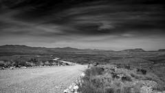 Long, Winding Road